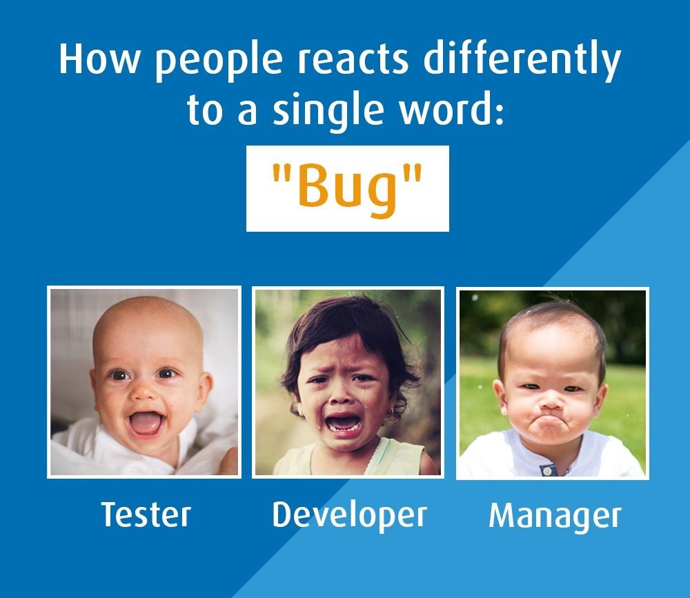 QA Bug Funny - mem