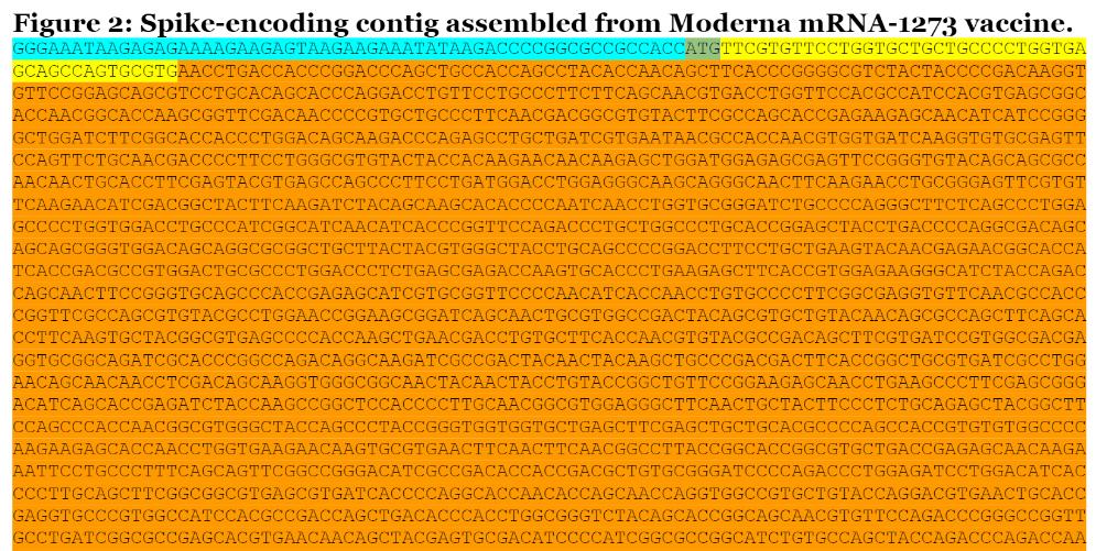 Szczepionka Moderna GitHub