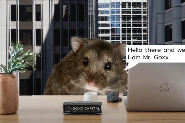 Mr. Goxx